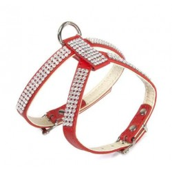Harnais cuir rouge écru et strass pour chien / Laisse