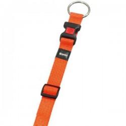 Collier nylon orange pour chien