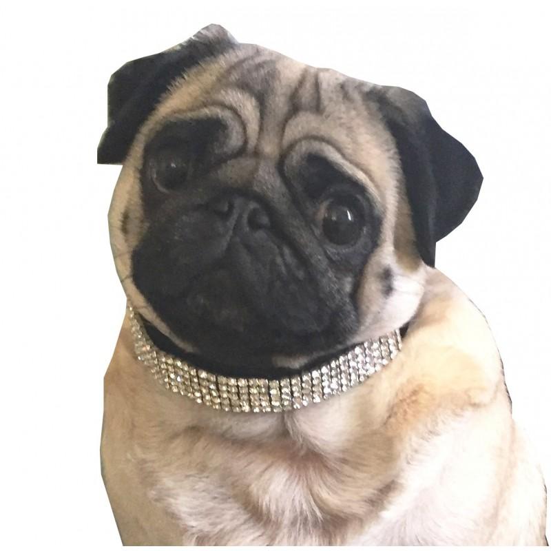 Collier bijou suédine noire et strass pour chien / Laisse