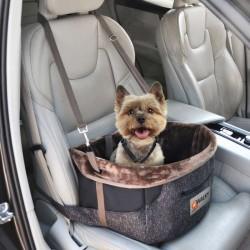 Panier de transport pour voiture pour chien