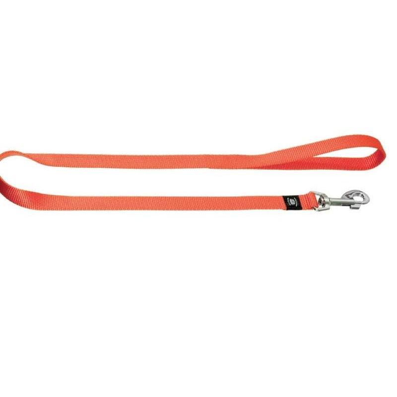 Laisse nylon orange  pour chien