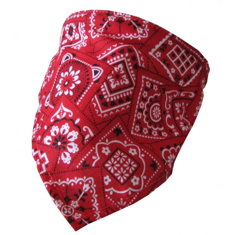 Collier Bandana rouge pour chien