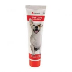 Dentifrice menthe pour chien
