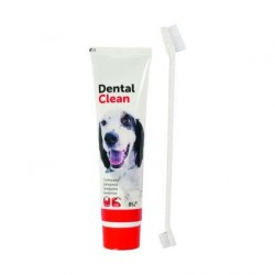 Kit dentifrice + brosse à dents pour chien