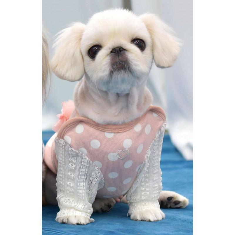 T-shirt rose poudré gros pois, noeud et dentelle pour chien